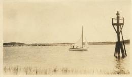 sailboatsculpin